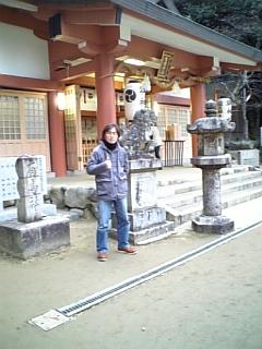 初詣(2008  )